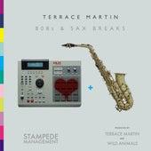 808s & Sax Breaks von Terrace Martin