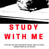 Study With Me - | A Real Time Study Session (without music) - For Studying & Focusing by Nature Sound Emporium