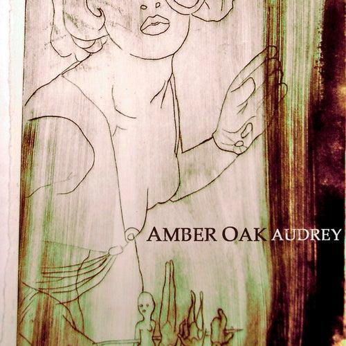 Audrey (Radio Version) by Amber Oak