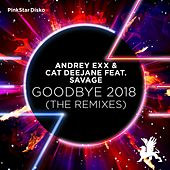 Goodbye 2018 (The Remixes) by Andrey Exx & Cat Deejane