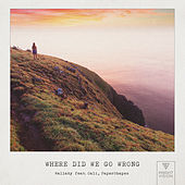 Where Did We Go Wrong (feat. Cali & PaperShapes) de Wallaby