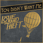You Didn't Want Me de Love and Theft
