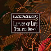 Leaves of Life (Falling Down) by Black Space Riders