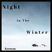 Night in the Winter de Various Artists