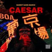 Caesar by Bandit Gang Marco