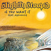 If You Want It de Slightly Stoopid