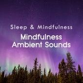 Mindfulness Ambient Sounds (Sleep & Mindfulness) by Sleepy Times