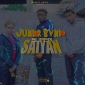 Super Saiyan de Junior Bvndo