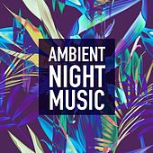 Ambient Night Music de Various Artists
