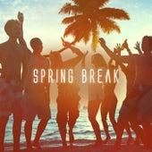 Spring Break by Various Artists