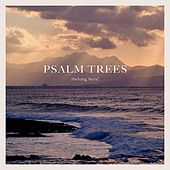 Belong Here by Psalm Trees
