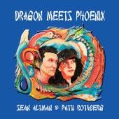 Dragon Meets Phoenix by Sean Altman