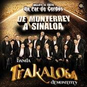 De Monterrey a Sinaloa de Edwin Luna y La Trakalosa de Monterrey
