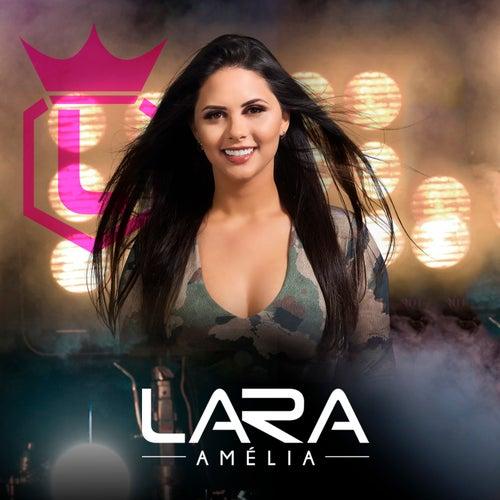 Assunto de Lara Amélia