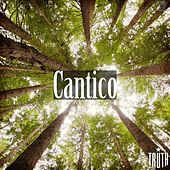 Cantico by Truth