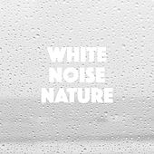 White Noise Nature by Various Artists