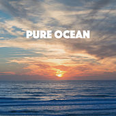 Pure Ocean by Various Artists