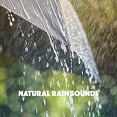 Natural Rain Sounds de Various Artists