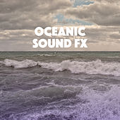 Oceanic Sound FX de Various Artists