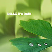 Relax Spa Rain by Various Artists