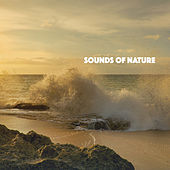 Sounds Of Nature de Various Artists