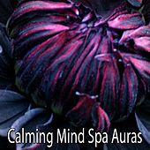 Calming Mind Spa Auras by Relaxing Spa Music