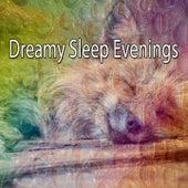 Dreamy Sleep Evenings by Relajación