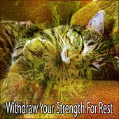 Withdraw Your Strength For Rest by Lullaby Land