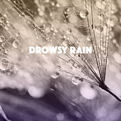 Drowsy Rain by Various Artists
