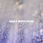 Relax White Noise de Various Artists