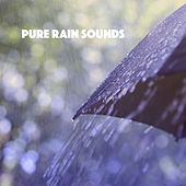 Pure Rain Sounds de Various Artists