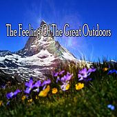 The Feeling Of The Great Outdoors von Massage Therapy Music