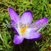 Sounds For Reflection de Meditación Música Ambiente