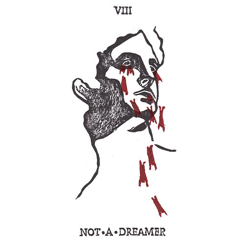 Not a Dreamer by Lloyd