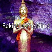 Rekindle The Mind de Nature Sounds Artists