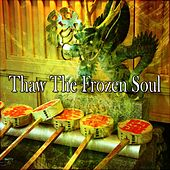 Thaw The Frozen Soul von Lullabies for Deep Meditation