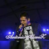 Cumbia Pop de Antonio Alaniz