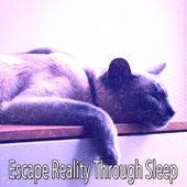 Escape Reality Through Sleep de Smart Baby Lullaby