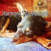 Harmony Spa Massage by Spa Relaxation