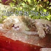 Turn Off At The Spa von Best Relaxing SPA Music