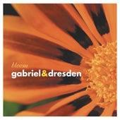Bloom von Various Artists