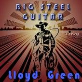 Big Steel Guitar by Lloyd Green