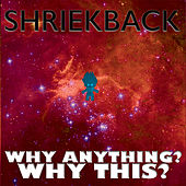 Why Anything? Why This? by Shriekback
