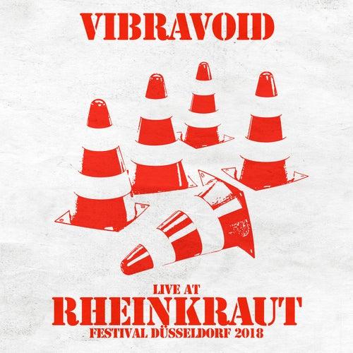 Live at Rheinkraut Festival Düsseldorf 2018 von Vibravoid