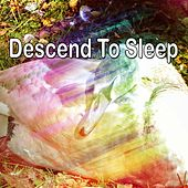 Descend To Sleep de White Noise Babies