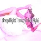Sleep Right Through The Night de Sleepicious