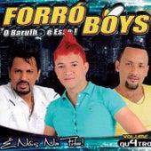 É Nóis na Fita!, Vol. 4 de Forró Boys