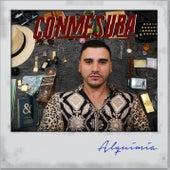 Alquimia by Conmesura