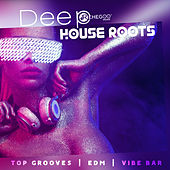 Deep House Roots (Top Grooves, EDM, Vibe Bar, Chill N' Hits Experience Music Club) de Various Artists