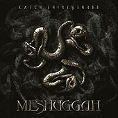 Catch Thirtythree de Meshuggah